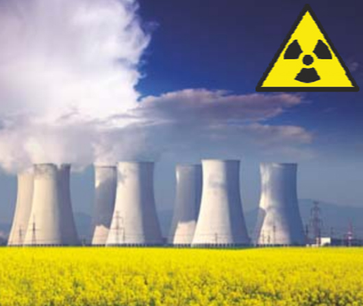 Steel Corrosion in Nuclear Plants