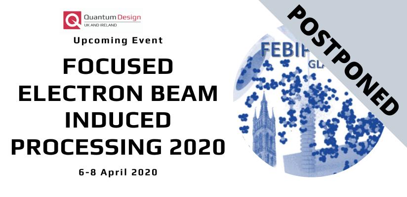 POSTPONED: Focused Electron Beam Induced Processing (FEBIP 2020)